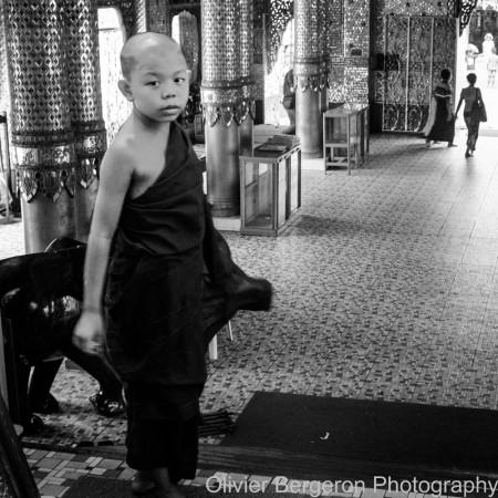 Young monk - Yangon Myanmar 2012