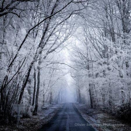 France - Nievre -paysage d'hiver - winter landscape