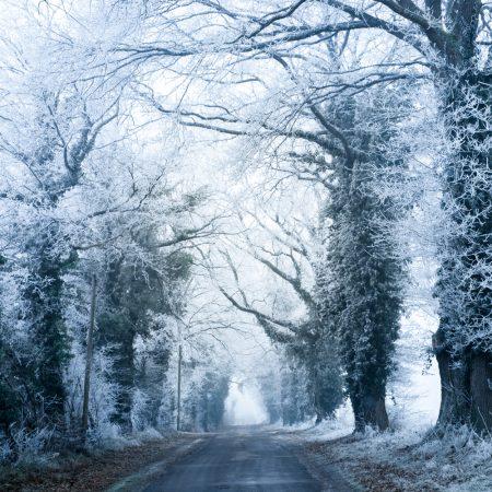 France - Nievre - paysage d'hiver - winter landscape