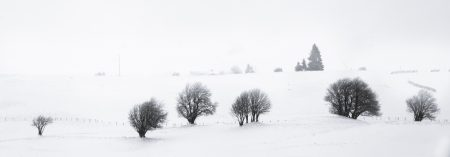 six bosquets - Auvergne - France - winter landscape