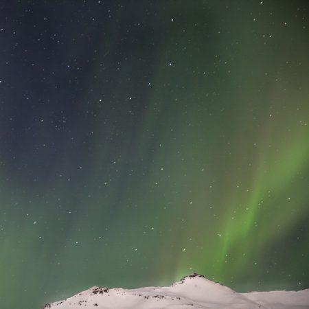 northern lights - hofn -iceland - mountain landscape - northern lights - hofn -iceland - mountain landscape - オーロラ - アイスランド