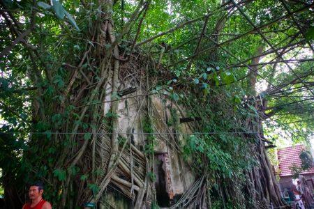 wat bang kung - amphawa - temple -- thailand